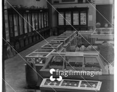 Cagliari, Regio Museo al Palazzo Vivanet