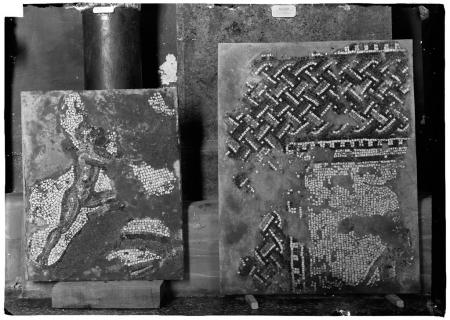 Mosaico, scavi Taramelli 1909