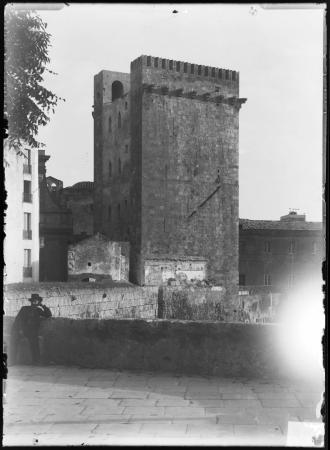 Torre dell'Elefante, veduta dal Bastione Santa Croce